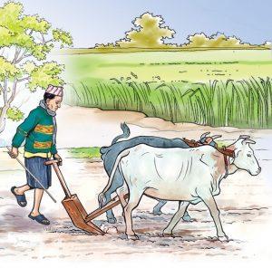 राष्ट्रिय किसान आयोगद्वारा कृषि क्षेत्रमा देखिएको समस्या समाधान गरिदिन आग्रह