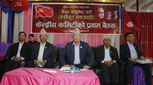 नेकपा एकीकृत समाजवादीको पहिलो केन्द्रीय कमिटी बैठक ३०१ सदस्यीय केन्द्रीय कमिटीसहितको सांगठनिक संरचना निर्माण गर्दै सम्पन्न